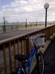 Lyng bici