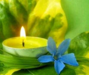 vela flor morada